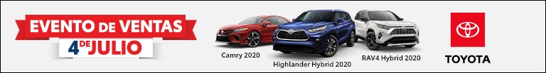 4th of July HCM