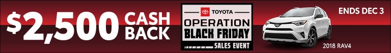Operation Black Friday